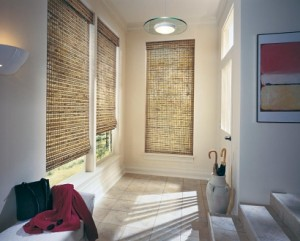 Window Blinds for 2012